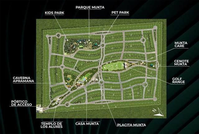 0 Circuito Varun, Puerto Morelos, TX 77580 (MLS #63779363) :: Michele Harmon Team