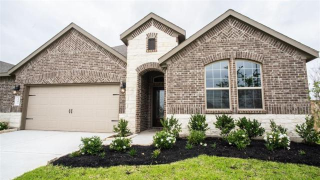 3802 Keatings Lagoon Court, Katy, TX 77494 (MLS #64636138) :: Texas Home Shop Realty