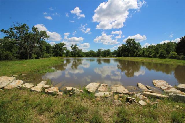 4082 County Road 157, Bedias, TX 77831 (MLS #64869855) :: TEXdot Realtors, Inc.