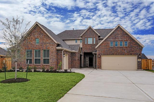2231 Bayou Cove Lane, League City, TX 77573 (MLS #64939707) :: The Heyl Group at Keller Williams