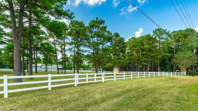 10630 Crestwater Circle, Magnolia, TX 77354 (MLS #65508127) :: Giorgi Real Estate Group