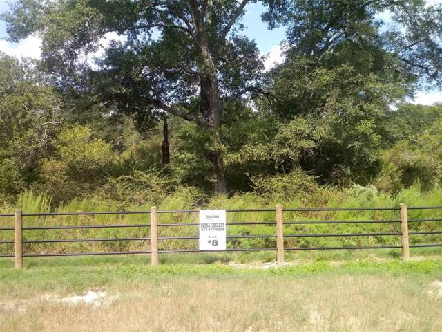 3909 Eli Road, Bellville, TX 77418 (MLS #65602546) :: Connect Realty