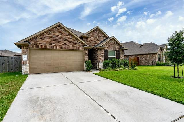 24419 N Newcastle Bay Trl, Spring, TX 77389 (MLS #67192557) :: The SOLD by George Team