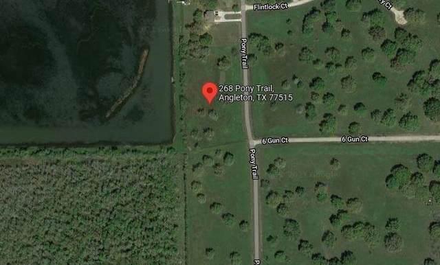 268 Pony Trail, Angleton, TX 77515 (MLS #67516181) :: Michele Harmon Team