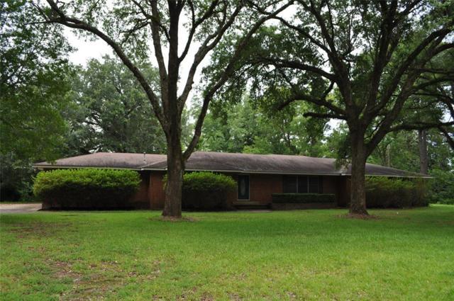1118 N Nellius, Woodville, TX 75979 (MLS #67897295) :: The SOLD by George Team