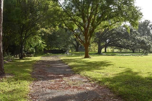 519 W Alkire Drive, Sugar Land, TX 77478 (MLS #68585102) :: Michele Harmon Team