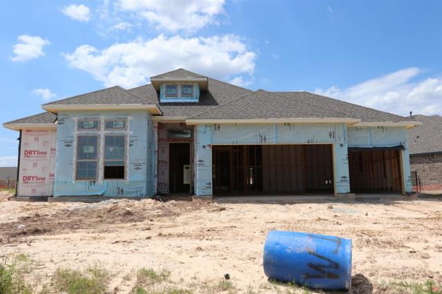 25 Botanical Vista Drive, Tomball, TX 77375 (MLS #69229999) :: The SOLD by George Team