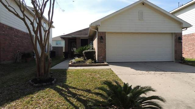 10838 Regal Manor Lane, Houston, TX 77075 (MLS #71198339) :: The Jill Smith Team