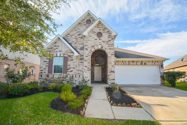 9110 Cavalier Lane, Rosenberg, TX 77469 (MLS #71261547) :: Magnolia Realty