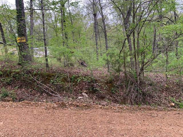 0 Lakeside Trail, Other, AR 72482 (MLS #71400668) :: Michele Harmon Team