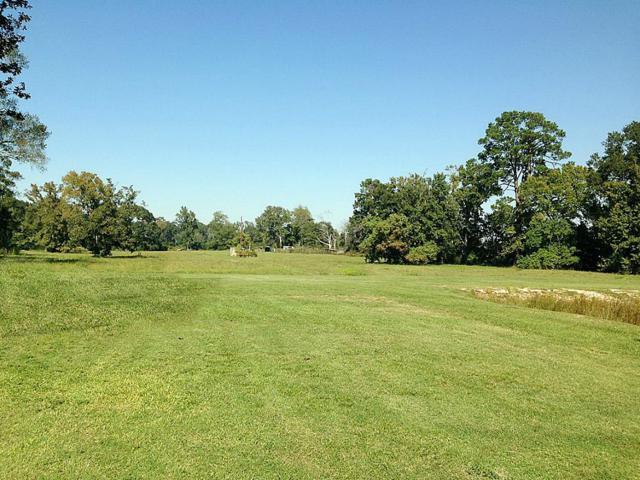 25111 Buck Road, Splendora, TX 77372 (MLS #71940878) :: Fairwater Westmont Real Estate