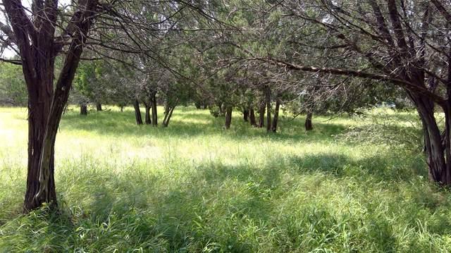 9891 Norwood Drive, Salado, TX 76571 (MLS #72561305) :: The Home Branch