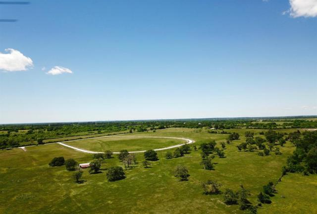 TBD - Lot 10 Cr 220, Anderson, TX 77830 (MLS #73048397) :: The SOLD by George Team