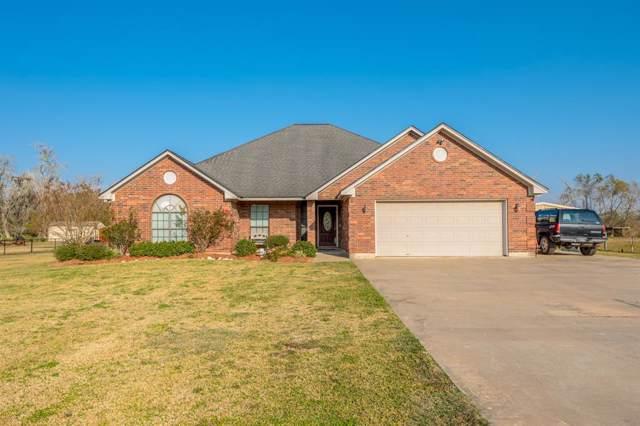 223 County Road 461B, Brazoria, TX 77422 (MLS #73776325) :: Texas Home Shop Realty