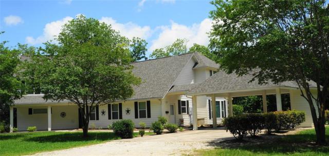 751 Haynes, Anahuac, TX 77514 (MLS #74347409) :: Krueger Real Estate