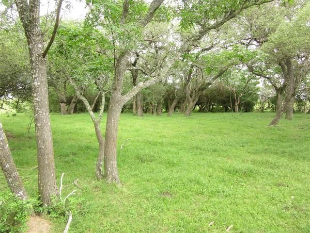 00000 Fm 2671 A, Cat Spring, TX 78933 (MLS #753054) :: Caskey Realty
