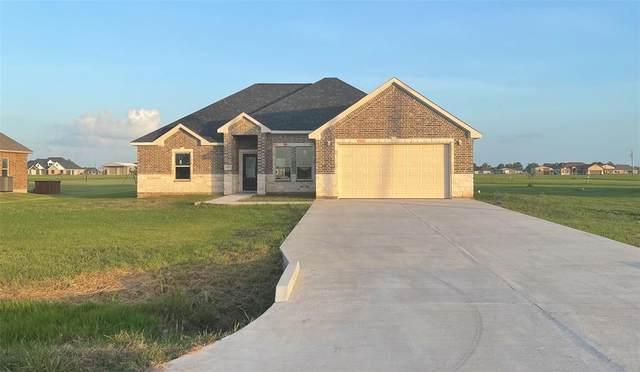 1131 Appaloosa Circle, Angleton, TX 77515 (MLS #77122431) :: Lerner Realty Solutions