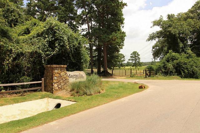 338 Council Oak Court, Magnolia, TX 77354 (MLS #77893562) :: Texas Home Shop Realty