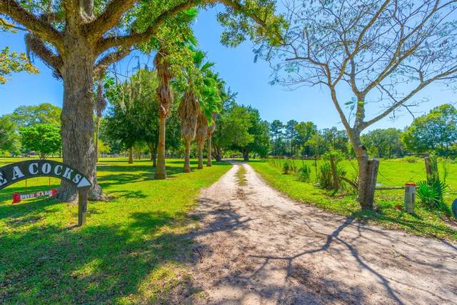 1372 County Road 377, Cleveland, TX 77327 (MLS #80082288) :: Green Residential