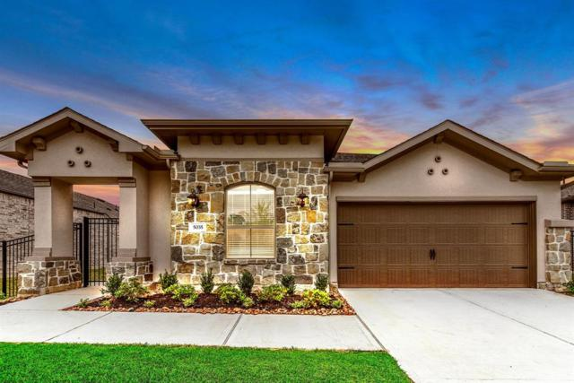 5035 Robin Park Court, Porter, TX 77365 (MLS #80686719) :: Connect Realty