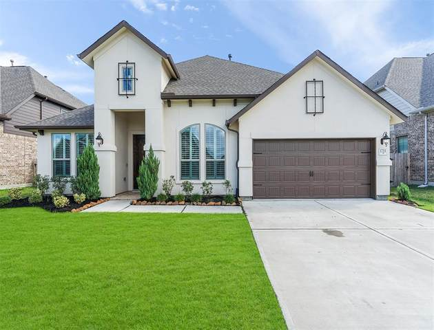 1711 Lakeside Harbor Court, League City, TX 77573 (MLS #80698729) :: The SOLD by George Team