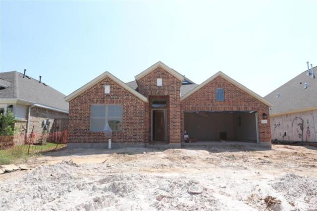 21714 Rose Maris, Tomball, TX 77377 (MLS #81015668) :: Fairwater Westmont Real Estate