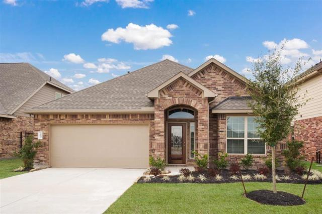 29642 Yaupon Shore, Spring, TX 77386 (MLS #81070135) :: Rachel Lee Realtor