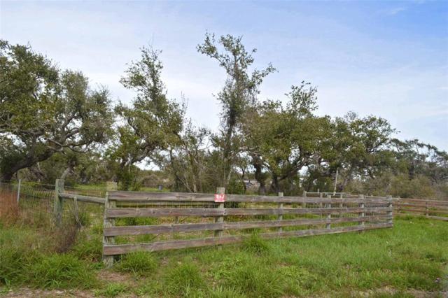 821 E Main Street, Rockport, TX 78382 (MLS #81199120) :: Magnolia Realty