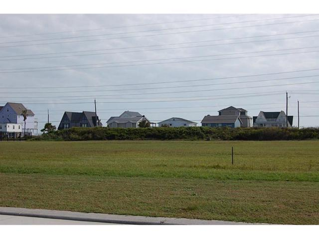 21305 Scissor Tail Lane, Galveston, TX 77554 (MLS #81661982) :: The SOLD by George Team