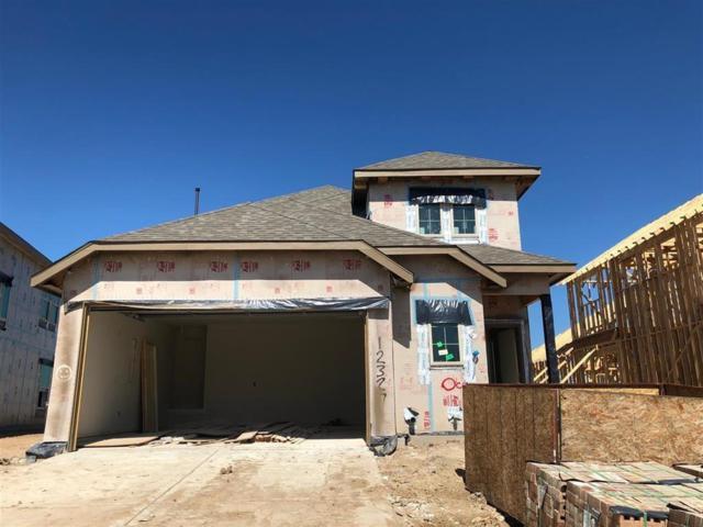 12327 Upper Mar Drive, Humble, TX 77346 (MLS #82838299) :: Texas Home Shop Realty