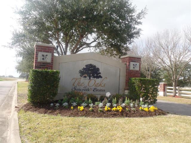 302 Hunter Court, Rosharon, TX 77583 (MLS #82859980) :: Texas Home Shop Realty