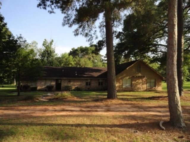 16803 E Butera E, Magnolia, TX 77355 (MLS #85426944) :: Texas Home Shop Realty