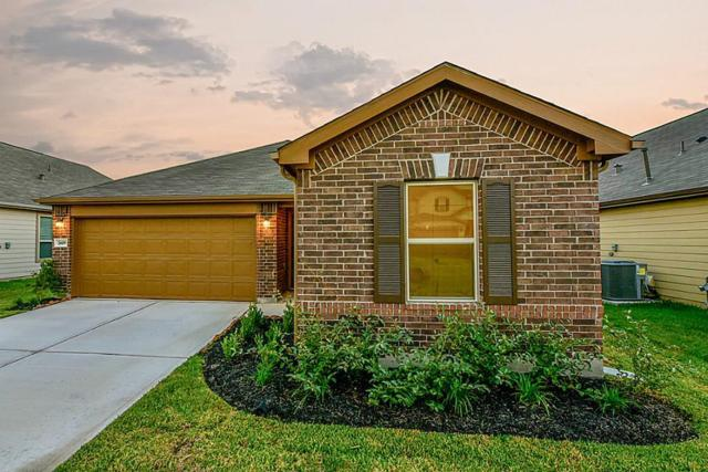 2619 Basil Point Court, Houston, TX 77038 (MLS #85778814) :: REMAX Space Center - The Bly Team