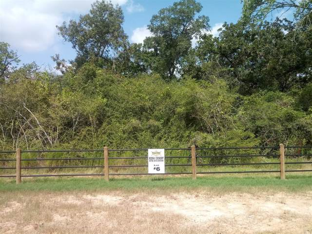 3751 Eli Road, Bellville, TX 77418 (MLS #86401090) :: Connect Realty