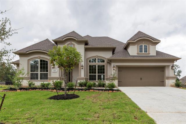 1603 Graystone Hills Drive, Conroe, TX 77304 (MLS #871266) :: The Heyl Group at Keller Williams