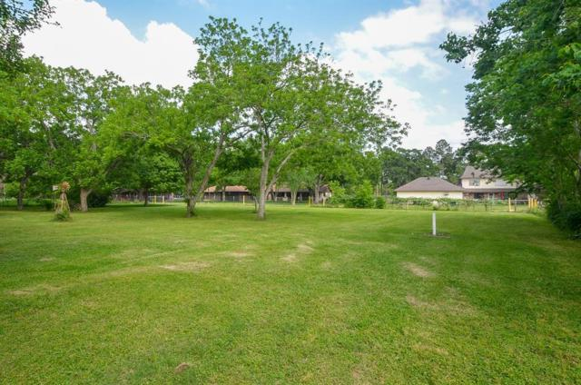 25203 Lakeview Road, Katy, TX 77494 (MLS #87694298) :: Fine Living Group