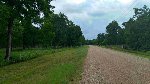15425 NW Tierra Grande Drive NW, Needville, TX 77461 (MLS #88144160) :: Texas Home Shop Realty