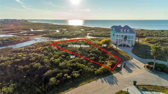 26115 Bay Breeze Drive, Galveston, TX 77554 (MLS #89306112) :: The SOLD by George Team