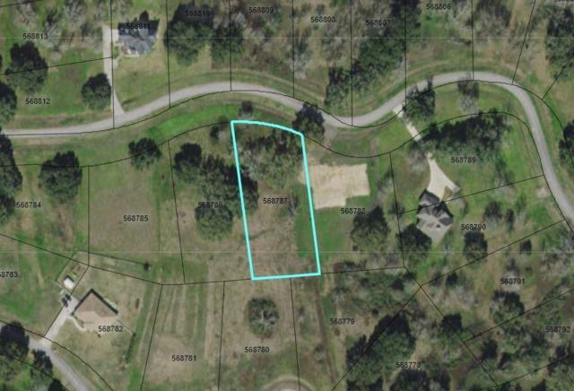 403 Lakeland Circle, Rosharon, TX 77583 (MLS #90157774) :: Caskey Realty