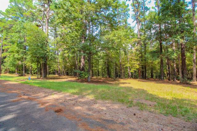 TR 17 Chain Road, Livingston, TX 77351 (MLS #90277093) :: Homemax Properties