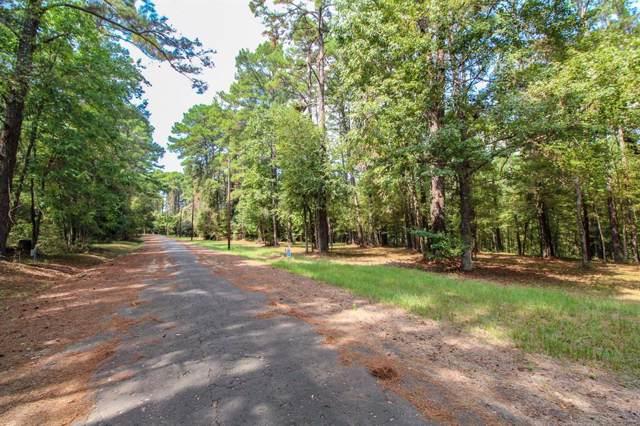 176 Grand Pine Loop, Livingston, TX 77351 (MLS #90667128) :: Michele Harmon Team