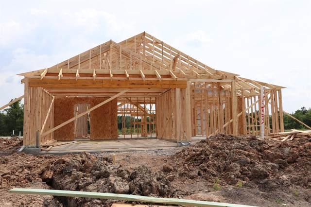 1253 Steed Bluff, Alvin, TX 77511 (MLS #93411020) :: KJ Realty Group