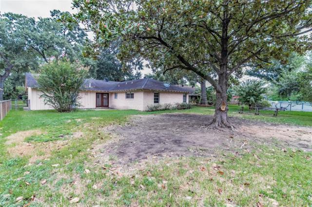6535 Cindy Lane, Houston, TX 77008 (MLS #94118626) :: Magnolia Realty