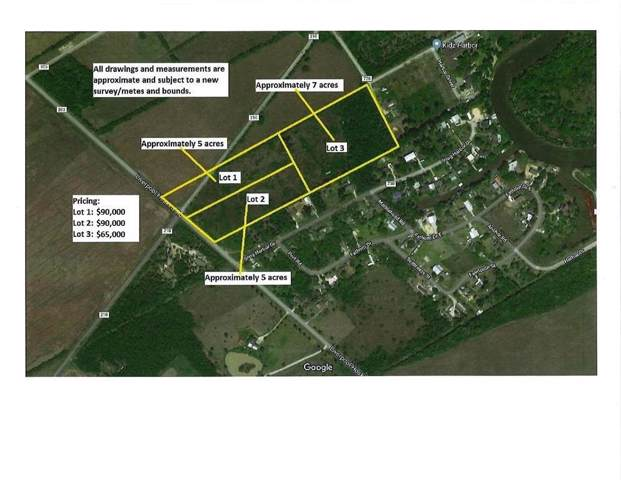0 County Road 203/ Lot 1, Liverpool, TX 77577 (MLS #9434157) :: Ellison Real Estate Team