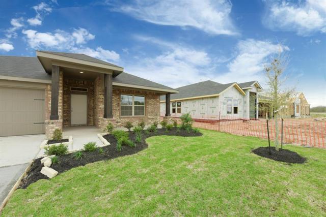 9003 Downing Street, Rosenberg, TX 77469 (MLS #94852171) :: Giorgi Real Estate Group