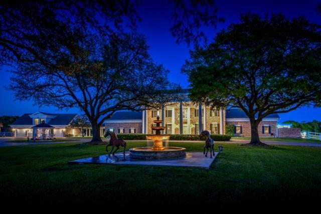 4501 Plantation Bend Street, Dickinson, TX 77539 (MLS #95324008) :: Texas Home Shop Realty