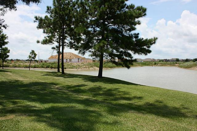 2872 Morning Pond Lane, League City, TX 77539 (MLS #96481490) :: REMAX Space Center - The Bly Team