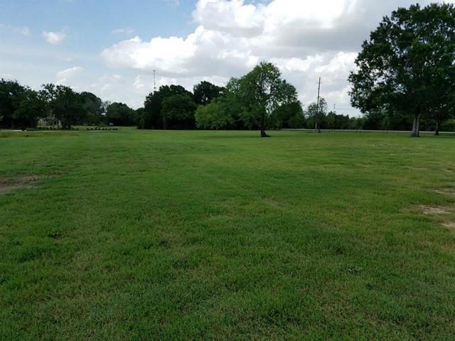 8402 Fulshear Run Trace, Fulshear, TX 77441 (MLS #97209024) :: Giorgi Real Estate Group