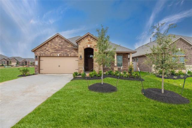 3923 Palmer Meadows Court, Katy, TX 77494 (MLS #998232) :: Connect Realty