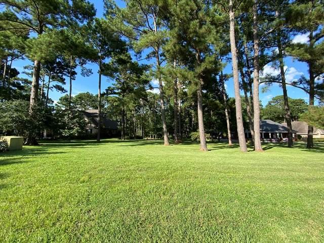 12868 Aries Loop, Willis, TX 77318 (MLS #10127385) :: The Home Branch